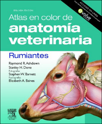 ATLAS EN COLOR DE ANATOMIA VETERINARIA' Rumiantes