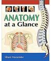 ANATOMY AT A GLANCE-9780071667203